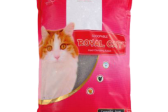 arena-royal-cat