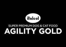 agility-gold
